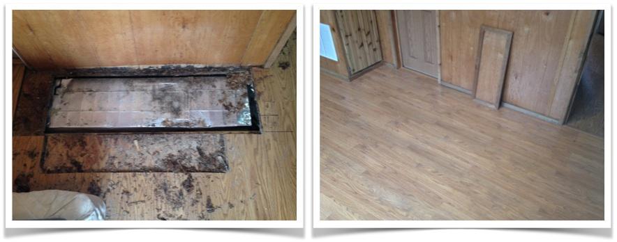 01 Cabin Floor