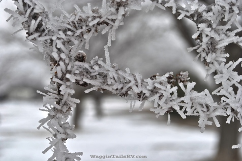 Frozen Fog 6