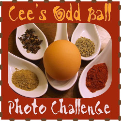 Cees Odd Ball